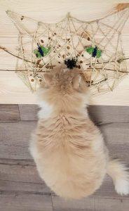 Fummelbrett Katzenkopf, Adventskalender 2019