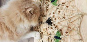 Fummelbrett Katzenkopf, Advendskalender 2019