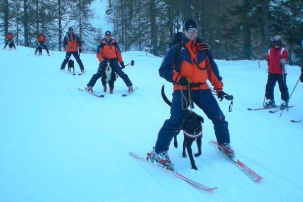 Skitourengehen mit Hund, Schnittverletzung