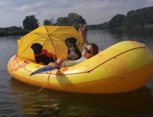 Reiseblog, Folge Nummer 3: Die An- und Abreise, sowie ein paar Tipps Rund um die Hitze